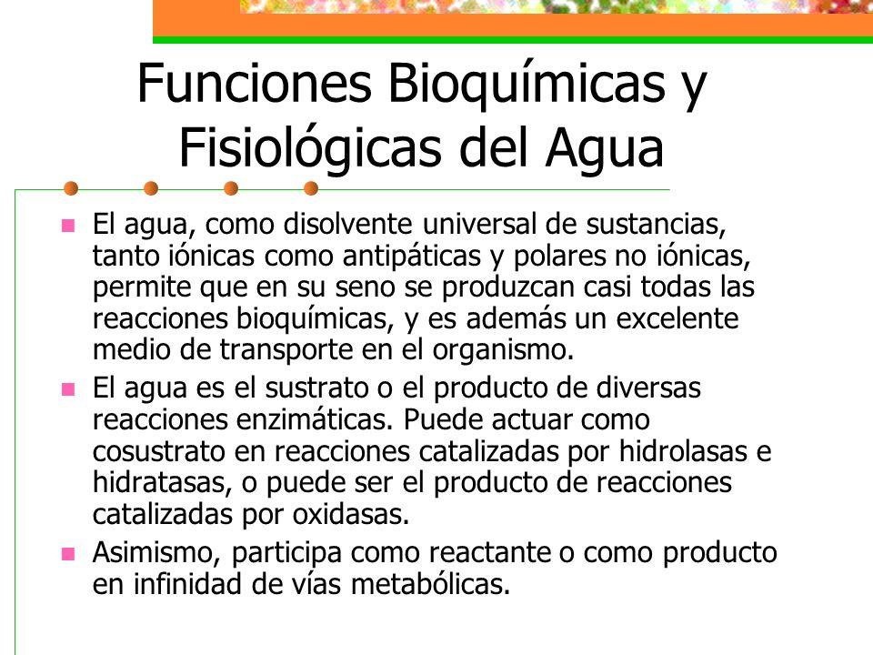 Funciones Bioquímicas y Fisiológicas del Agua El agua, como disolvente universal de sustancias, tanto iónicas como antipáticas y polares no iónicas, p