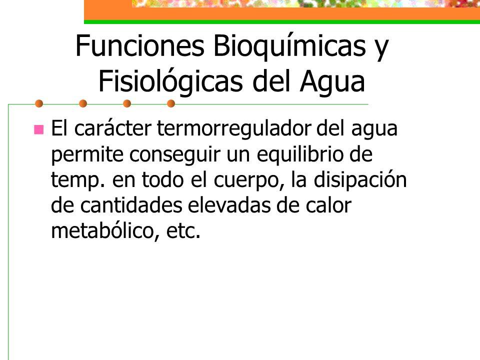 Funciones Bioquímicas y Fisiológicas del Agua El carácter termorregulador del agua permite conseguir un equilibrio de temp. en todo el cuerpo, la disi