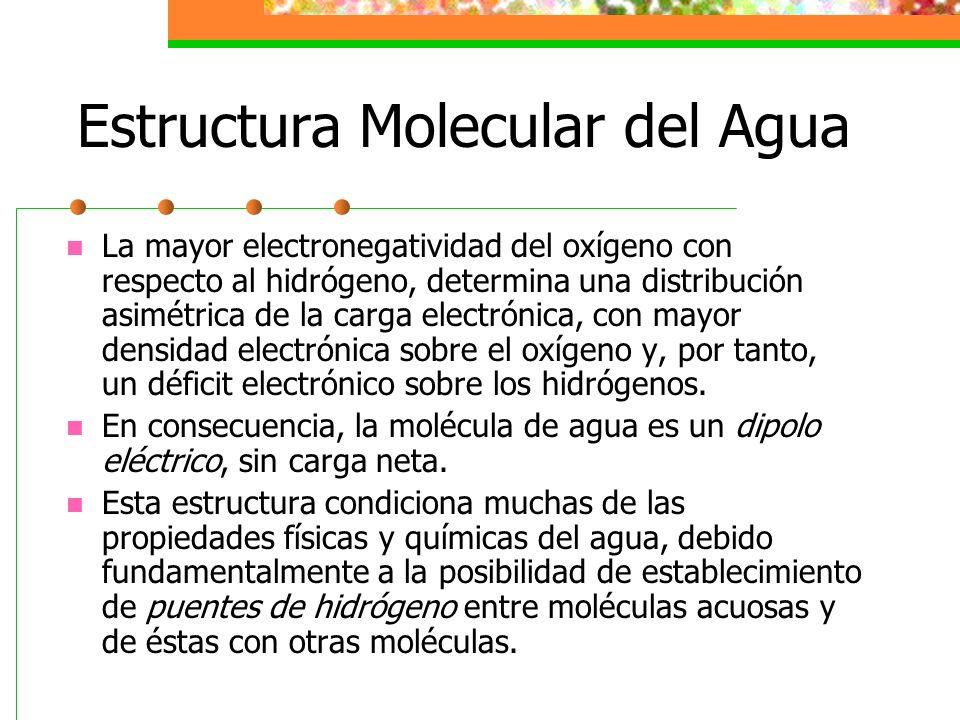 Propiedades Físicas y Químicas del Agua 7.