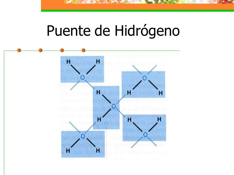 Propiedades Físicas y Químicas del Agua 10.