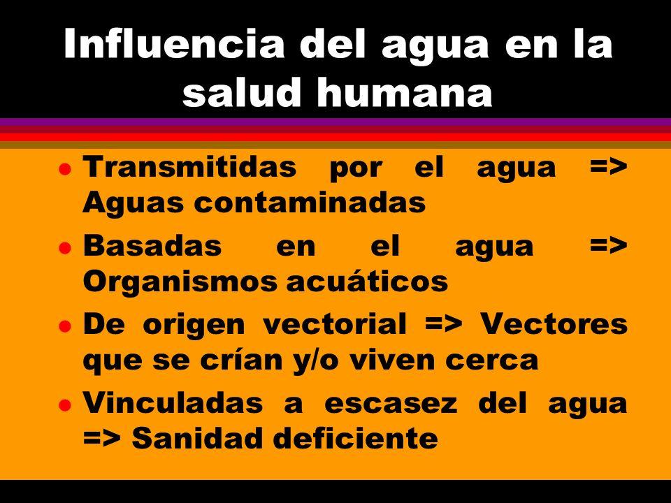 CATEGORIAEJEMPLOSCONTROL I) Transportados por el agua (a) ClásicasTifoidea, cólera, diarreasMejorar calidad (b) No clásicasHepatitis, shigella, polio bacteriológica II) Relacionadas con la higiene (a) Piel y ojosSarna, tracoma, etc.Mejorar cantidad y (b) DiarreasDesintería bacilar, etc.continuidad III) Basadas en el agua (a) PenetraciónEsquistosomiasis, etc.Protección (usuario) (b) IngestiónDracontiasis, etc.Protección (fuente) IV) Infecciones a través de vectores (a) PicadurasTripanosomiasis, etc.Agua entubada desde (b) Reproducción en el aguaFiebre amarilla, etc.la fuente hasta su uso V) Deficiencias de saneamientoTuberculosisDisposición excretas