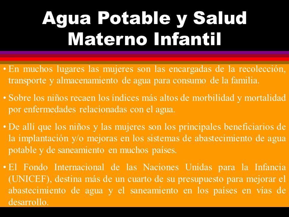 B.PARAMETROS PARA SUSTANCIAS NO DESEABLES (en altas concentraciones ) 15.