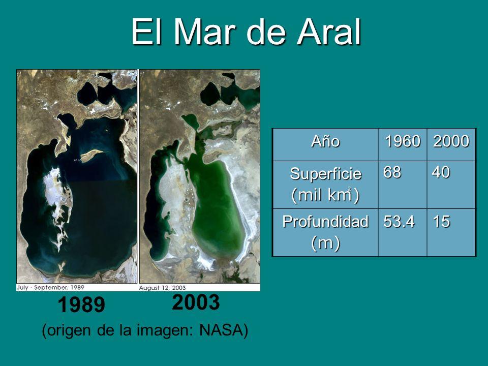 El Mar de Aral Año19602000 Superficie (mil k ) 6840 Profundidad(m)53.415 1989 2003 (origen de la imagen: NASA)