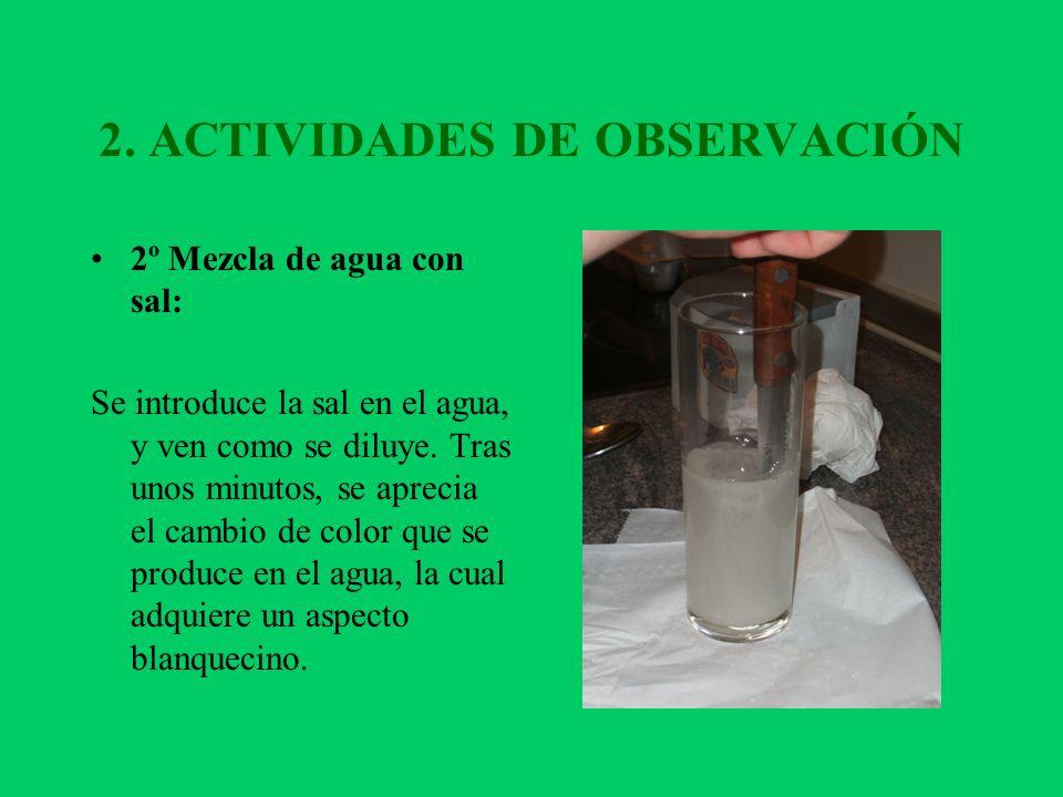 2. ACTIVIDADES DE OBSERVACIÓN 2º Mezcla de agua con sal: Se introduce la sal en el agua, y ven como se diluye. Tras unos minutos, se aprecia el cambio