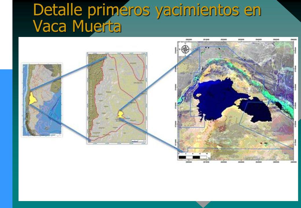 Detalle primeros yacimientos en Vaca Muerta