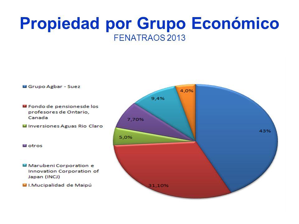 Propiedad por Grupo Económico FENATRAOS 2013