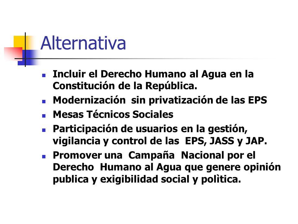 Alternativa Incluir el Derecho Humano al Agua en la Constitución de la República.