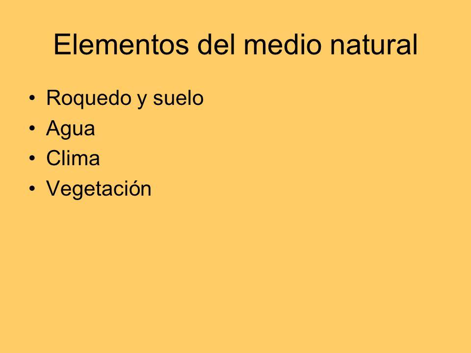 Geografía del agua Elementos del medio natural Enfoques del estudio del agua Planificación
