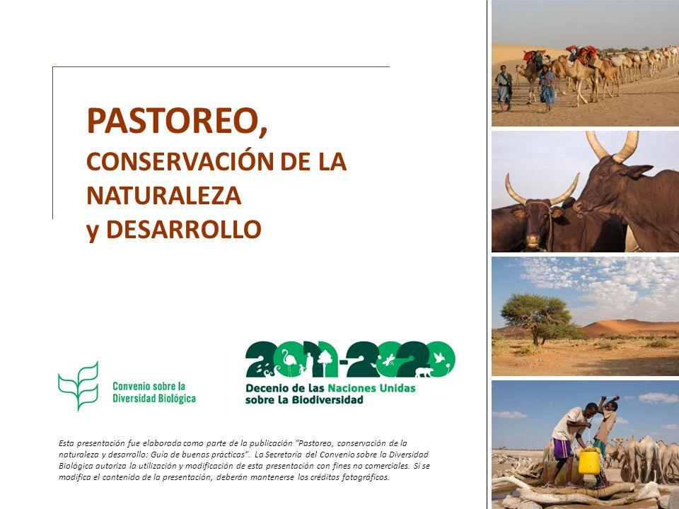 Esta presentación fue elaborada como parte de la publicación Pastoreo, conservación de la naturaleza y desarrollo: Guía de buenas prácticas. La Secret