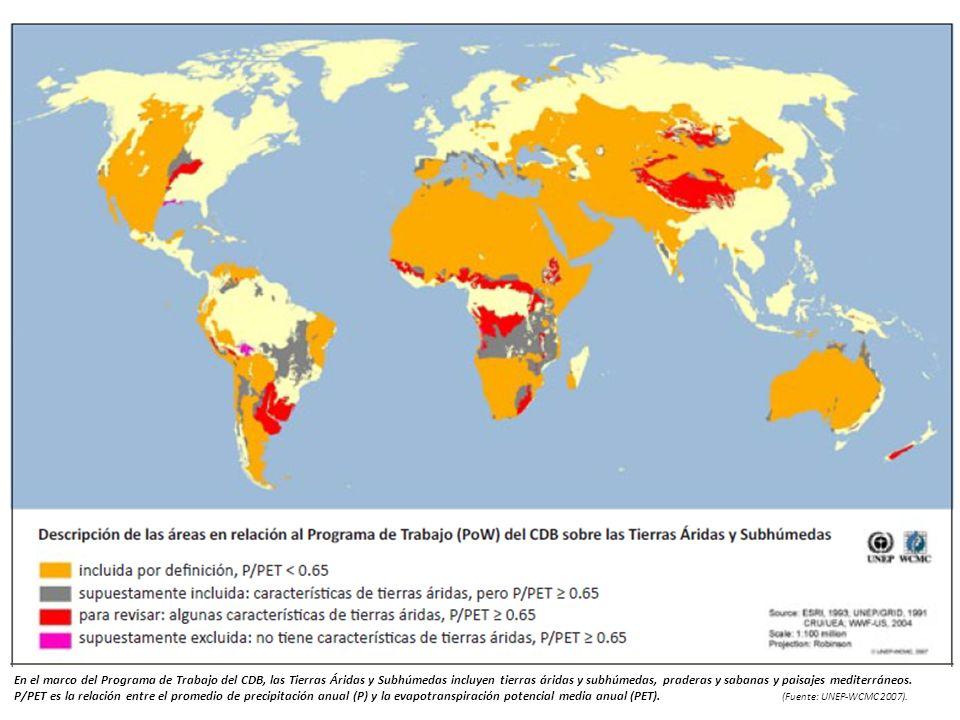 En el marco del Programa de Trabajo del CDB, las Tierras Áridas y Subhúmedas incluyen tierras áridas y subhúmedas, praderas y sabanas y paisajes medit
