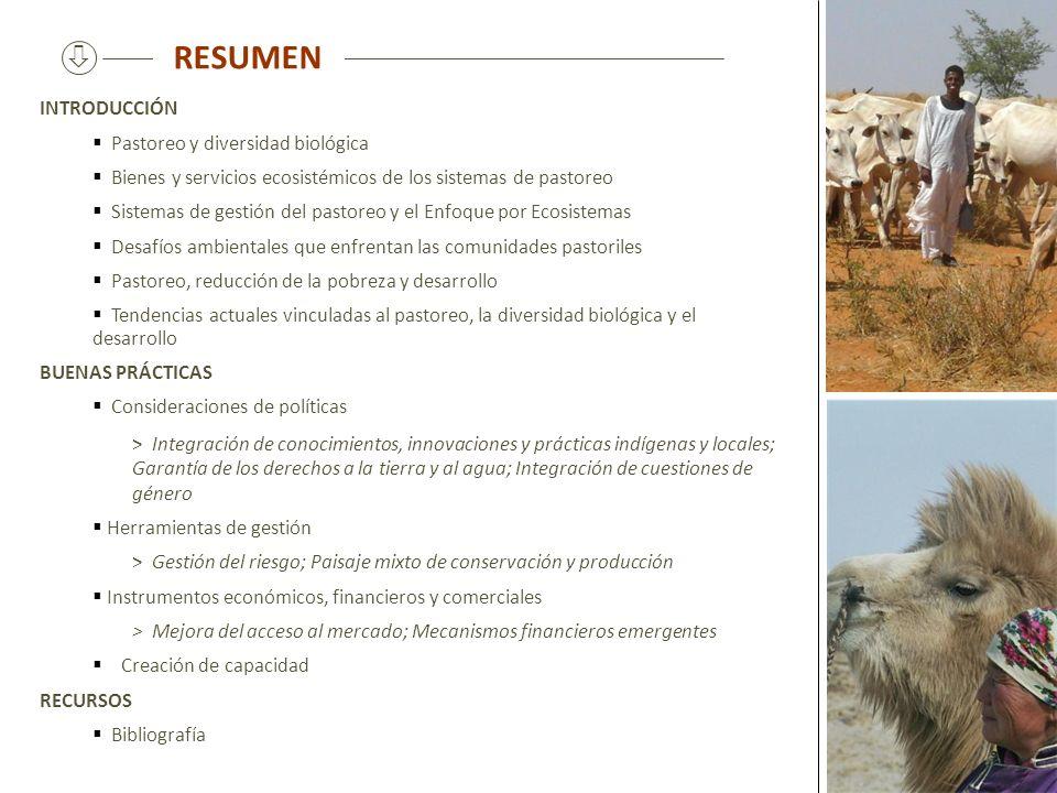 RESUMEN INTRODUCCIÓN Pastoreo y diversidad biológica Bienes y servicios ecosistémicos de los sistemas de pastoreo Sistemas de gestión del pastoreo y e