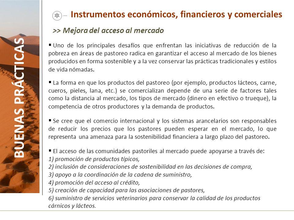 Instrumentos económicos, financieros y comerciales BUENAS PRÁCTICAS >> Mejora del acceso al mercado Uno de los principales desafíos que enfrentan las