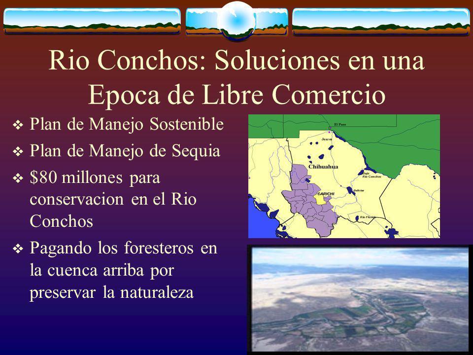 Rio Conchos: Soluciones en una Epoca de Libre Comercio Plan de Manejo Sostenible Plan de Manejo de Sequia $80 millones para conservacion en el Rio Conchos Pagando los foresteros en la cuenca arriba por preservar la naturaleza