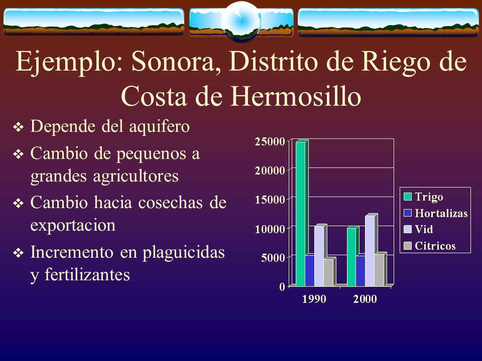 Ejemplo: Sonora, Distrito de Riego de Costa de Hermosillo Depende del aquifero Cambio de pequenos a grandes agricultores Cambio hacia cosechas de exportacion Incremento en plaguicidas y fertilizantes