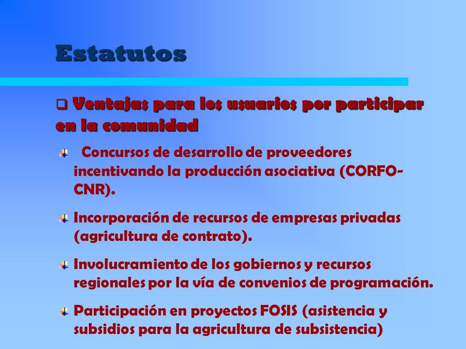 Estatutos Concursos de desarrollo de proveedores incentivando la producción asociativa (CORFO- CNR). Incorporación de recursos de empresas privadas (a