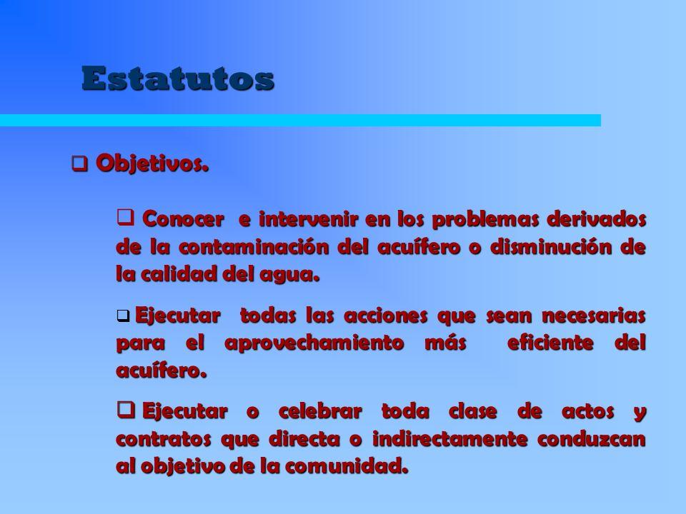 Estatutos Objetivos. Objetivos. Conocer e intervenir en los problemas derivados de la contaminación del acuífero o disminución de la calidad del agua.