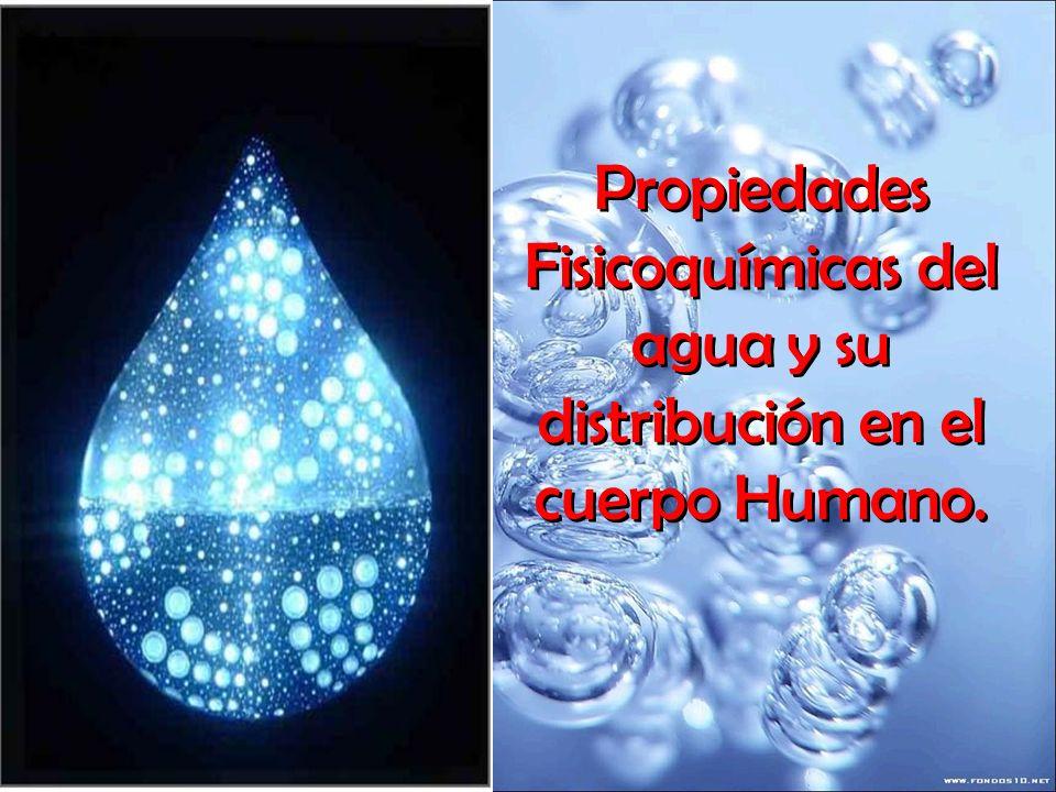 Propiedades Fisicoquímicas del agua y su distribución en el cuerpo Humano.