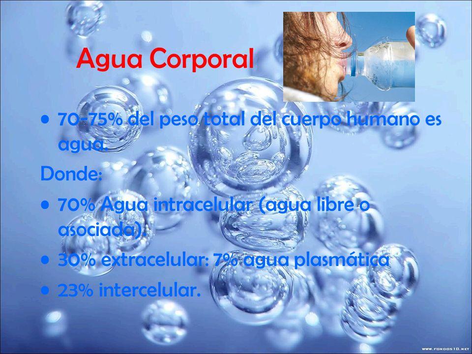 Agua Corporal 70-75% del peso total del cuerpo humano es agua. Donde: 70% Agua intracelular (agua libre o asociada). 30% extracelular: 7% agua plasmát