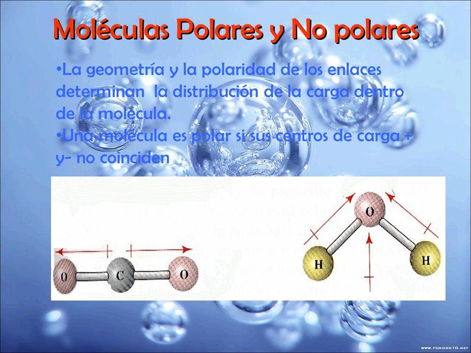 Moléculas Polares y No polares La geometría y la polaridad de los enlaces determinan la distribución de la carga dentro de la molécula. Una molécula e