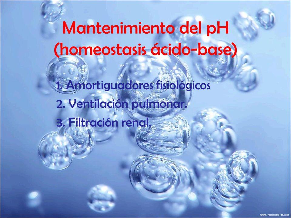 Mantenimiento del pH (homeostasis ácido-base) 1. Amortiguadores fisiológicos 2. Ventilación pulmonar. 3. Filtración renal.