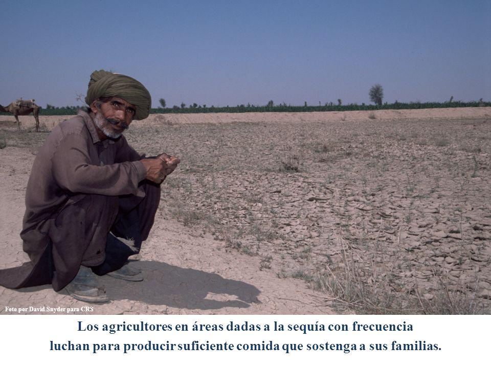 Los agricultores en áreas dadas a la sequía con frecuencia luchan para producir suficiente comida que sostenga a sus familias.