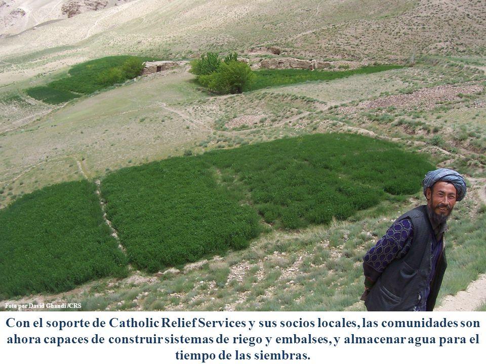 Con el soporte de Catholic Relief Services y sus socios locales, las comunidades son ahora capaces de construir sistemas de riego y embalses, y almacenar agua para el tiempo de las siembras.