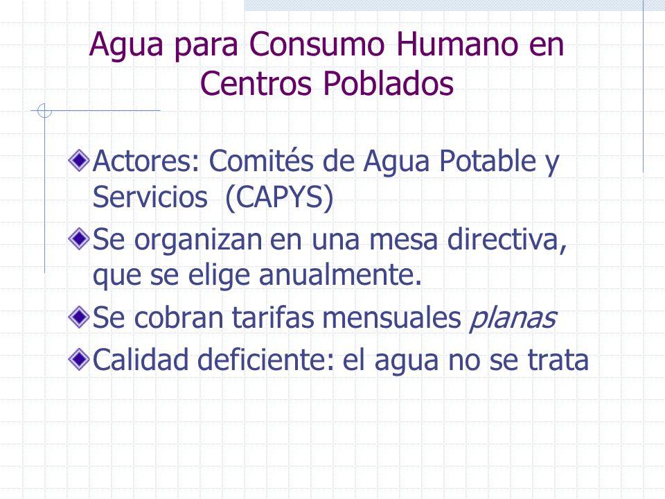 Agua para Consumo Humano en Centros Poblados Actores: Comités de Agua Potable y Servicios (CAPYS) Se organizan en una mesa directiva, que se elige anu