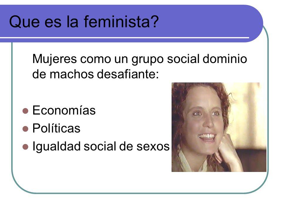 Que es la feminista? Mujeres como un grupo social dominio de machos desafiante: Economías Políticas Igualdad social de sexos