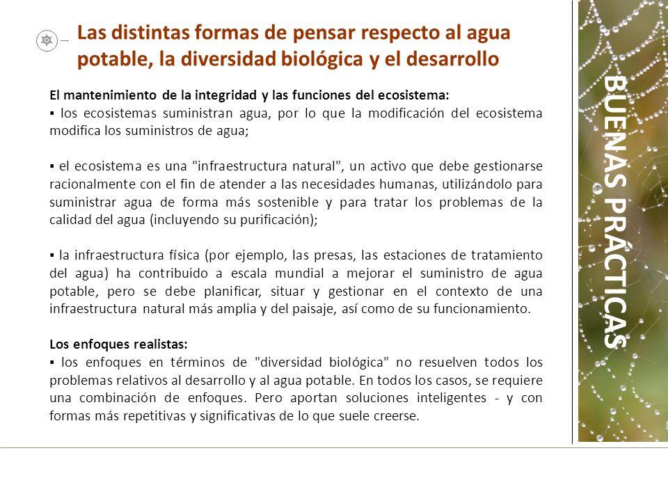 El mantenimiento de la integridad y las funciones del ecosistema: los ecosistemas suministran agua, por lo que la modificación del ecosistema modifica