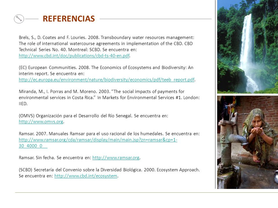 REFERENCIAS Brels, S., D. Coates and F. Louries. 2008. Transboundary water resources management: The role of international watercourse agreements in i