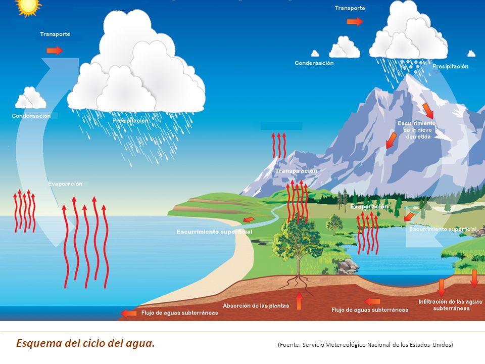 Esquema del ciclo del agua. (Fuente: Servicio Metereológico Nacional de los Estados Unidos)