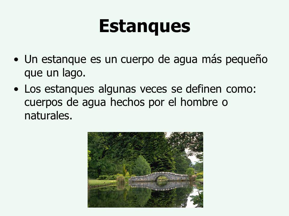 Estanques Un estanque es un cuerpo de agua más pequeño que un lago. Los estanques algunas veces se definen como: cuerpos de agua hechos por el hombre
