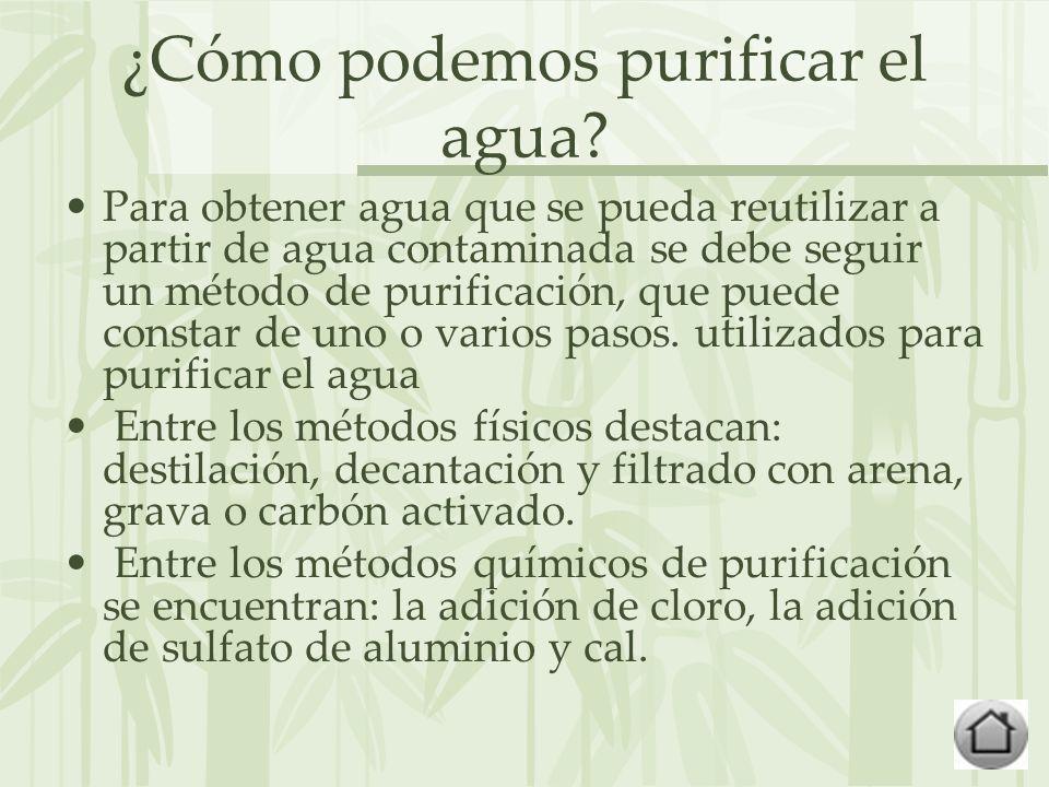 ¿Cómo podemos purificar el agua.