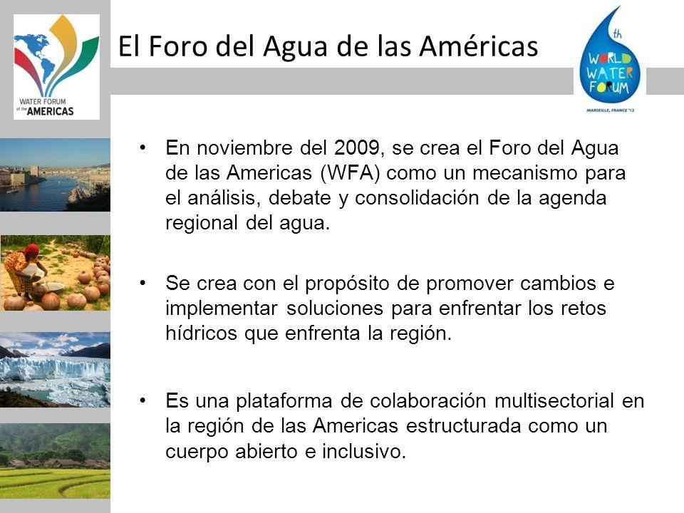 En noviembre del 2009, se crea el Foro del Agua de las Americas (WFA) como un mecanismo para el análisis, debate y consolidación de la agenda regional