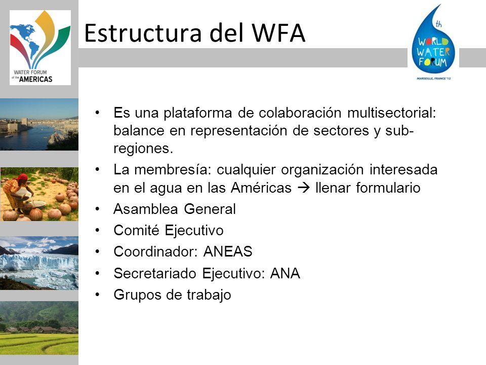 Es una plataforma de colaboración multisectorial: balance en representación de sectores y sub- regiones. La membresía: cualquier organización interesa