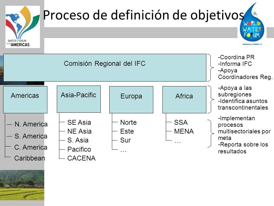 Proceso de definición de objetivos Comisión Regional del IFC Americas Asia-Pacific EuropaAfrica N. America S. America SE Asia NE Asia S. Asia Pacifico