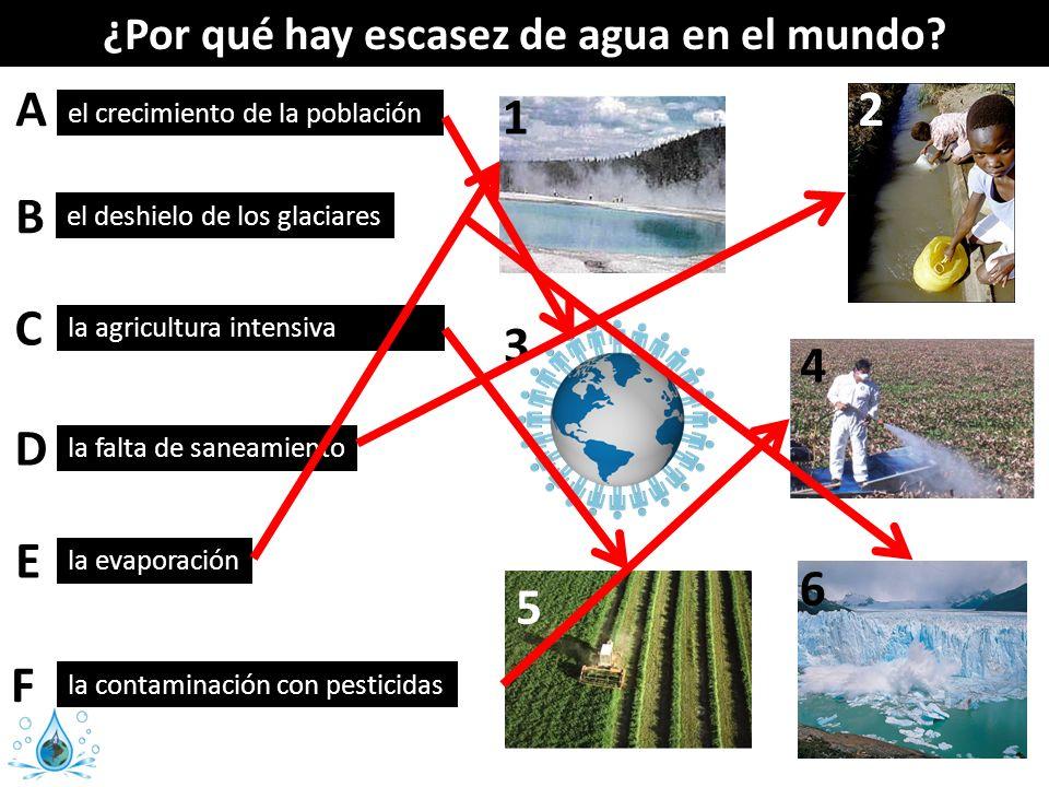 el crecimiento de la población la contaminación con pesticidas el deshielo de los glaciares la agricultura intensiva la evaporación la falta de saneam