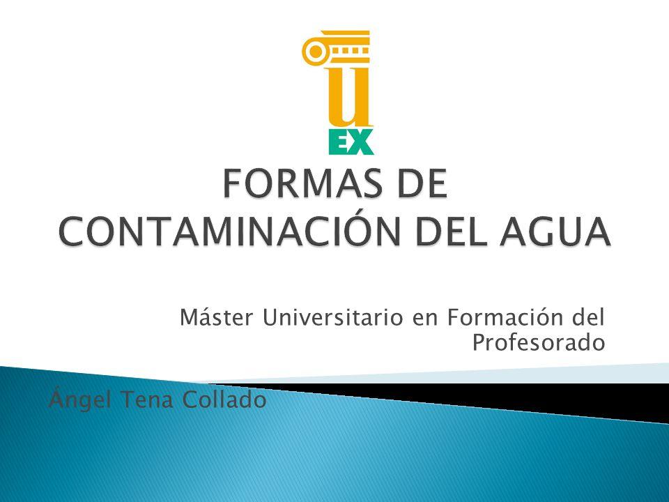Máster Universitario en Formación del Profesorado Ángel Tena Collado