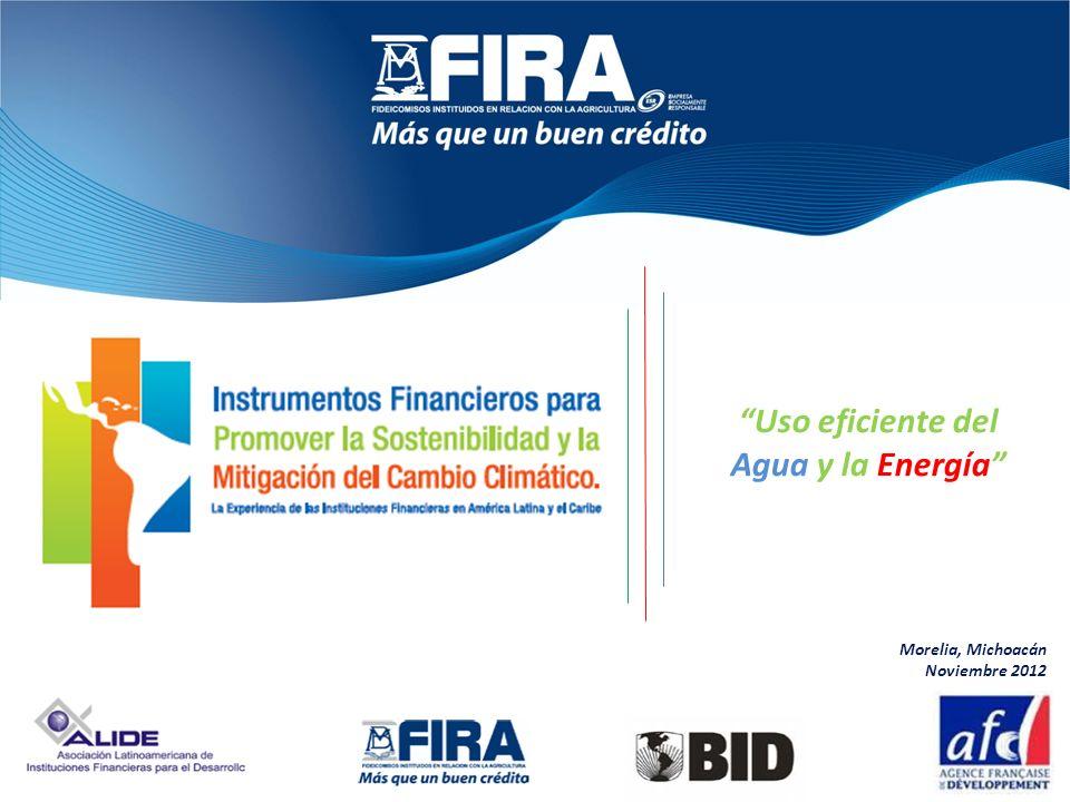 Uso eficiente del Agua y la Energía Morelia, Michoacán Noviembre 2012