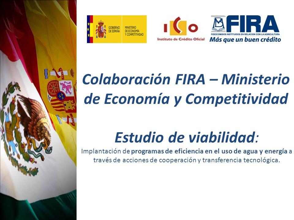 Colaboración FIRA – Ministerio de Economía y Competitividad Estudio de viabilidad: Implantación de programas de eficiencia en el uso de agua y energía a través de acciones de cooperación y transferencia tecnológica.