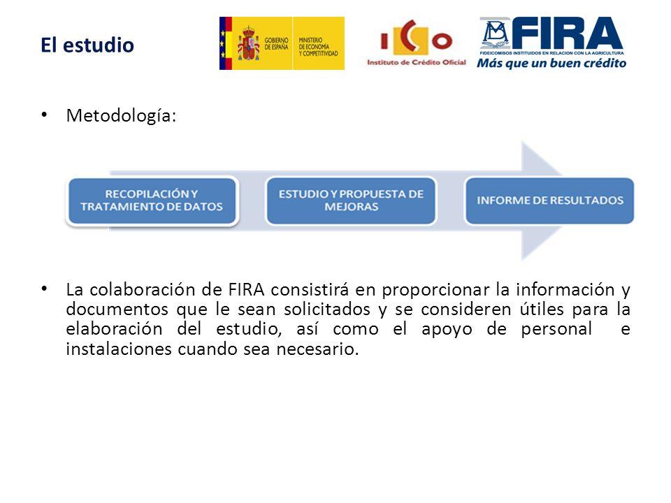 Metodología: El estudio La colaboración de FIRA consistirá en proporcionar la información y documentos que le sean solicitados y se consideren útiles para la elaboración del estudio, así como el apoyo de personal e instalaciones cuando sea necesario.