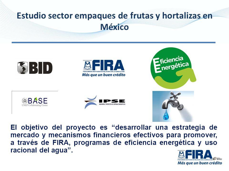 Estudio sector empaques de frutas y hortalizas en México El objetivo del proyecto es desarrollar una estrategia de mercado y mecanismos financieros efectivos para promover, a través de FIRA, programas de eficiencia energética y uso racional del agua.