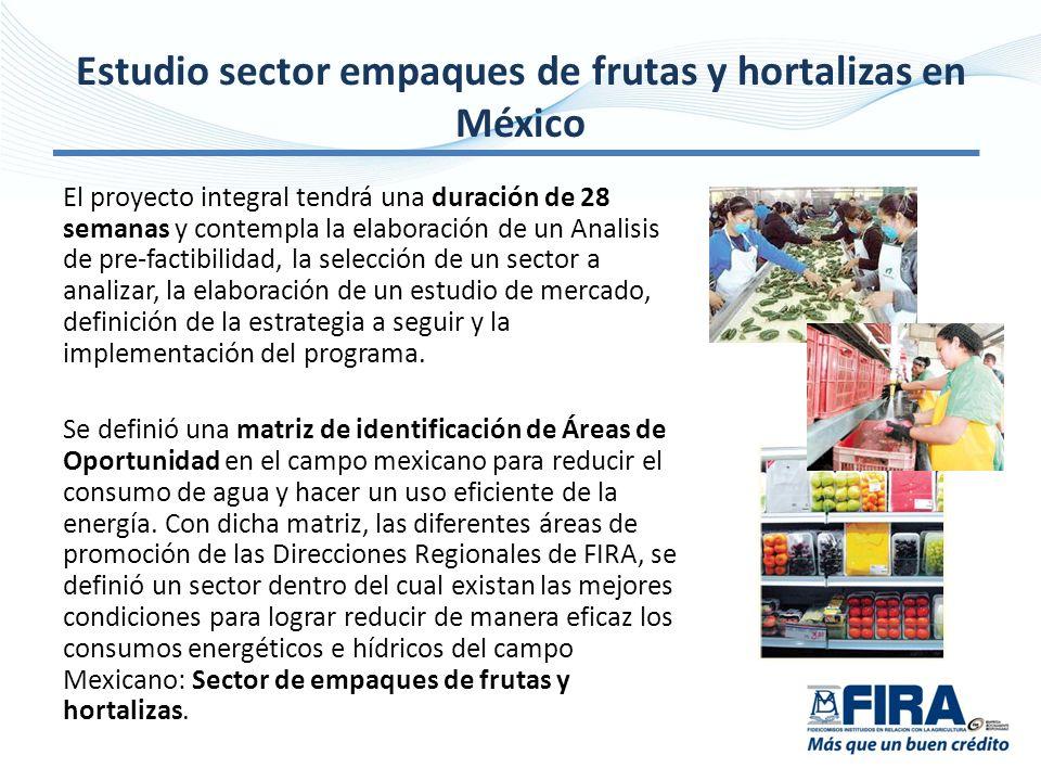 Estudio sector empaques de frutas y hortalizas en México El proyecto integral tendrá una duración de 28 semanas y contempla la elaboración de un Analisis de pre-factibilidad, la selección de un sector a analizar, la elaboración de un estudio de mercado, definición de la estrategia a seguir y la implementación del programa.