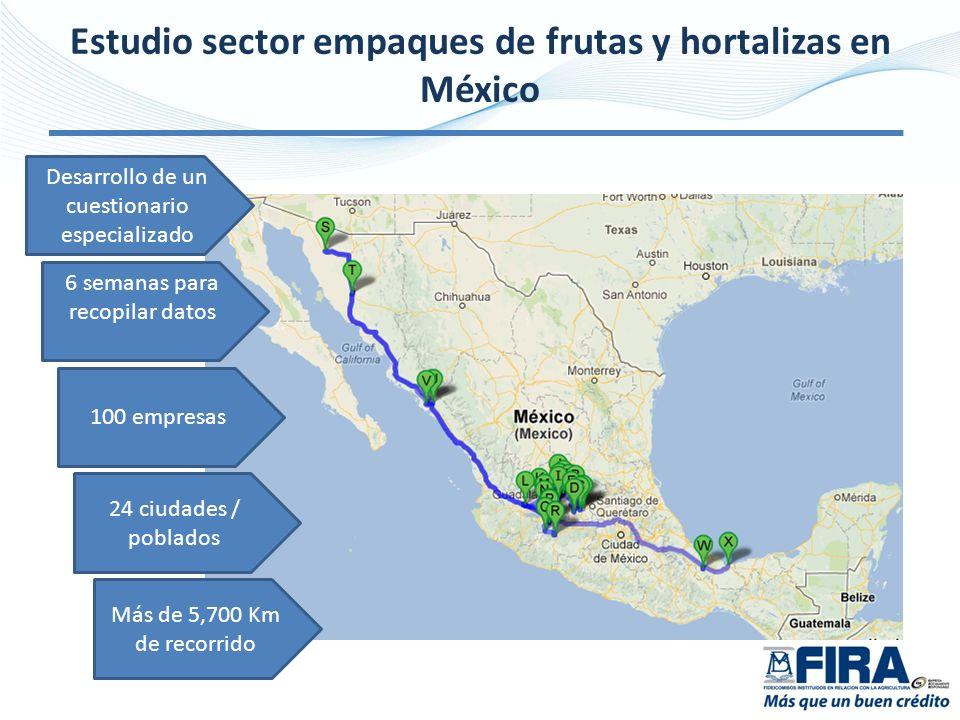 Estudio sector empaques de frutas y hortalizas en México 6 semanas para recopilar datos Desarrollo de un cuestionario especializado 100 empresas 24 ciudades / poblados Más de 5,700 Km de recorrido