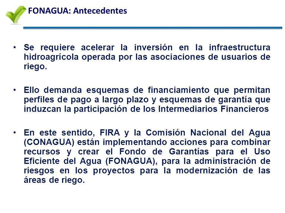FONAGUA: Antecedentes Se requiere acelerar la inversión en la infraestructura hidroagrícola operada por las asociaciones de usuarios de riego.
