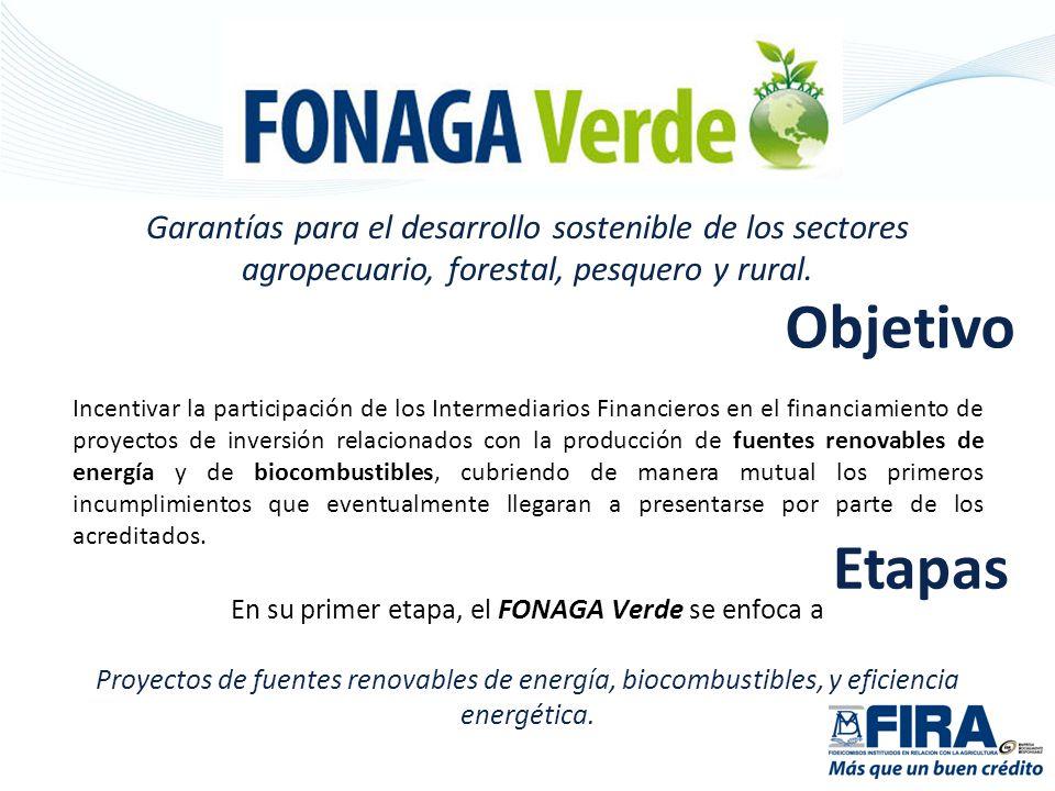 En el caso de proyectos no señalados en la relación anterior, FIRA se pronunciará sobre la elegibilidad con base en la conformidad que emita el Fondo de Transición y la SAGARPA.