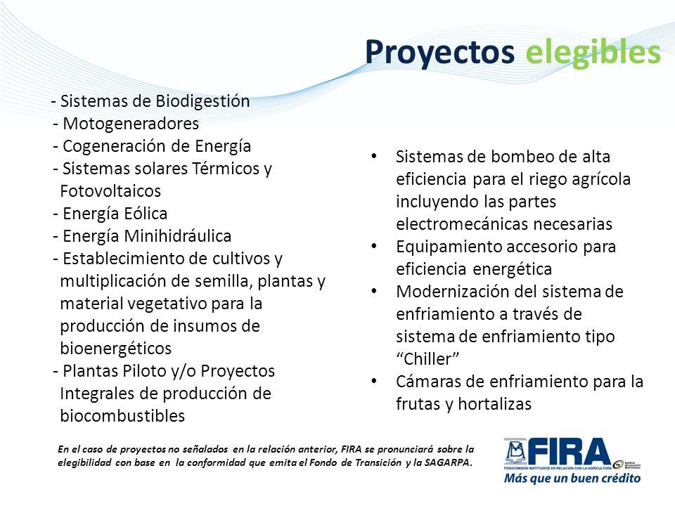 GRACIAS Erick Rodríguez Maldonado Subdirección de Banca de Inversión y Nuevos Productos erodriguez@fira.gob.mx 01 800 999 FIRA (3472) www.fira.gob.mx Síguenos en twitter: @fira_mexico