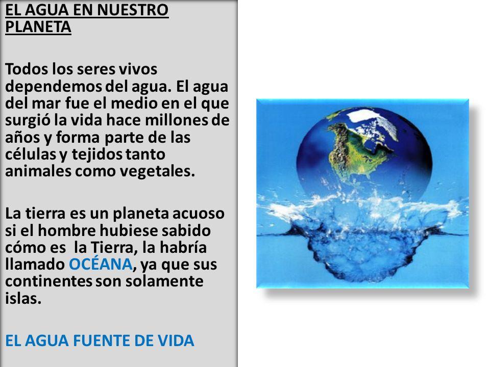 EL AGUA EN NUESTRO PLANETA Todos los seres vivos dependemos del agua.