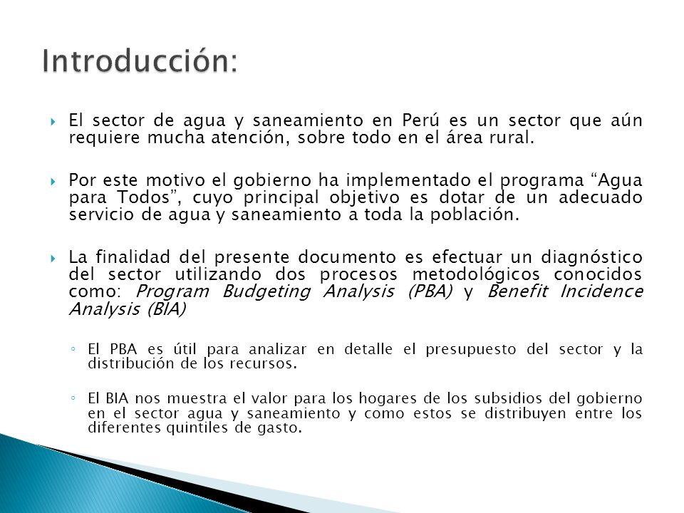 El sector de agua y saneamiento en Perú es un sector que aún requiere mucha atención, sobre todo en el área rural.