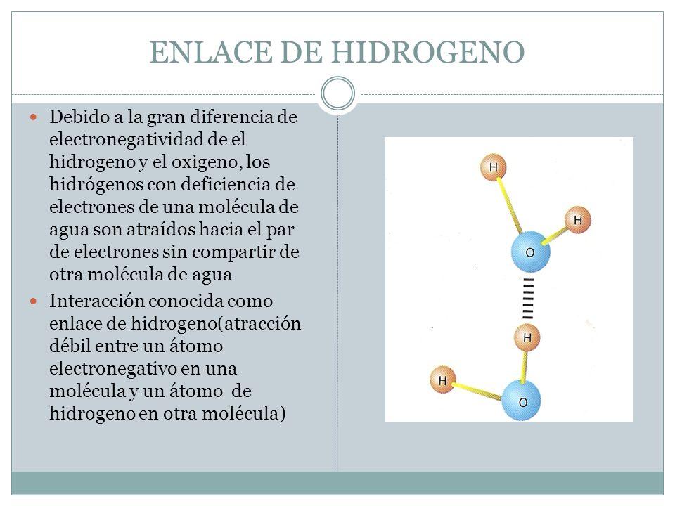 INTERACCIONES ELECTROSTATICAS Las interacciones no covalentes son normalmente electrostáticas(se producen entre el núcleo positivo de un átomo y las nubes electrónicas negativas de otro átomo cercano Las interacciones no covalentes individuales son realmente débiles y por lo tanto se rompen con facilidad Determinan las propiedades químicas y físicas del agua